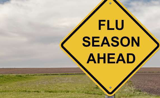 See why the flu is nothing to take lightly