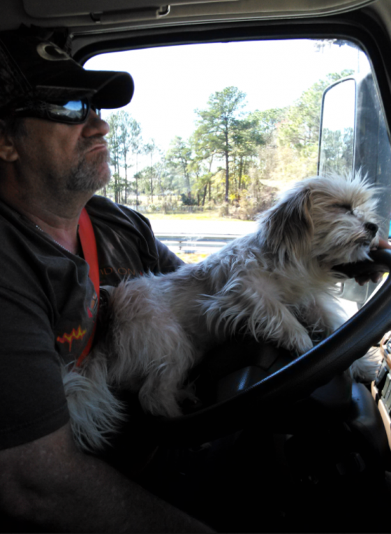 Trucker with his Dog