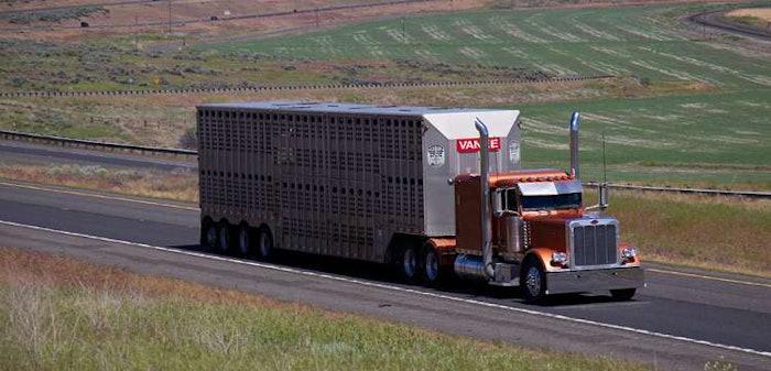 bull-hauler